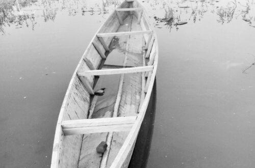 Article : La montée du fleuve Chari : entre noyade et trafic clandestin
